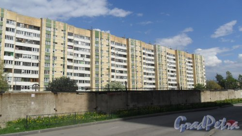 Дунайский проспект, дом 7, литер А. 10-этажный жилой дом серии 600.11 1993 года постройки. 11 парадных, 437 квартир. Вид дома со двора. Фото 16 мая 2016 года.