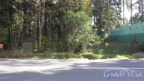 Всеволожск, Христиновский проспект, дом 66. Фото 19 сентября 2016 года.