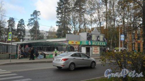Всеволожск, Всеволожский проспект, дом 70А. Магазин мебели «Дом кухни». Фото 1 октября 2016 года.
