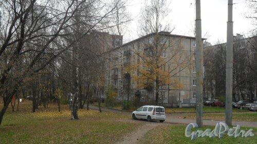 Заневский проспект, дом 63. 5-этажный жилой дом серии 1-335 1962 года постройки. 5 парадных, 100 квартир. Фото 2 ноября 2016 года.