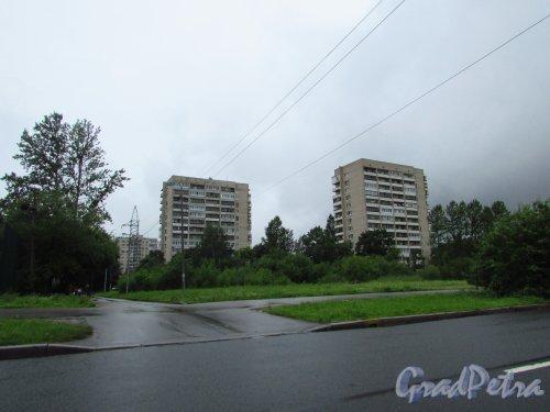 Витебский проспект, дом 37 (слева) и Витебский проспект, дом 35 (справа). Фото 7 июля 2016 года.