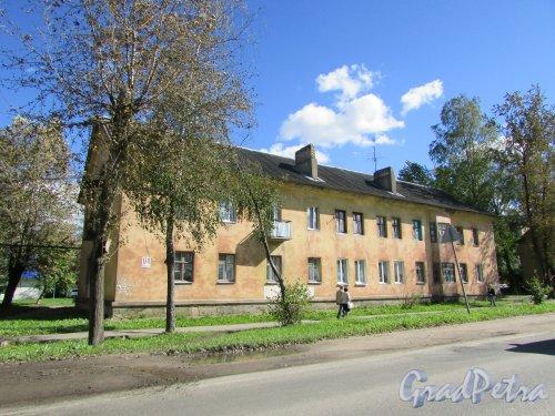 Ленинградская область, Тосненский район, город Никольское, Советский проспект, дом 174. Фото 31 августа 2016 года.