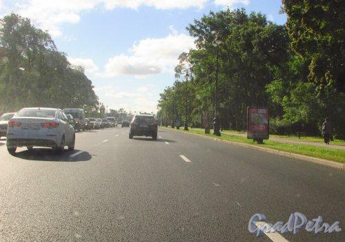 Новое асфальтовое покрытие на проезжей части Каменноостровского проспекта у Александровского парка. Фото 8 сентября 2016 года.