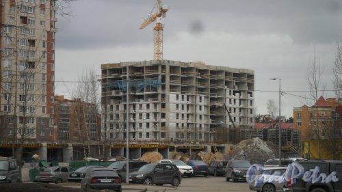 Новоколомяжский проспект, дом 17. Общий вид новостройки. Фото 22 марта 2017 года.