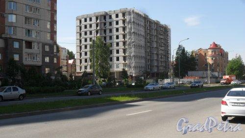 Новоколомяжский проспект, дом 17. Общий вид новостройки 16 июня 2017 года.