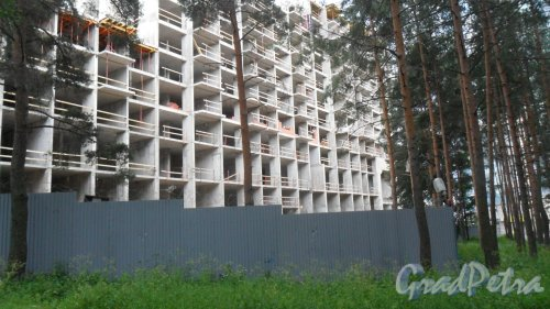 Проспект Тореза, дом 118, литер А. Строительство многоквартирного жилого 25-26-этажного жилого дома со встроенно-пристроенным двухуровневым подземным гаражом, генеральный подрядчик ООО