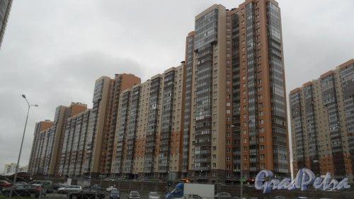 Комендантский проспект, дом 51, корпус 1. 24-этажный жилой дом 2009 года постройки. 11 парадных, 1489 квартир, 194 нежилых помещения. Фото 30 октября 2017 года.