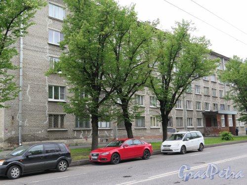 Кондратьевский пр., 54. 5-ми этажный жилой дом с административными помещениями, 1-я пол. 1960-х гг. Общий вид. фото июль 2015 г.