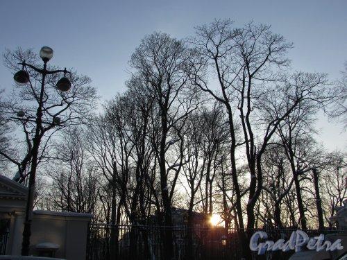 Невский проспект, дом 39. Вид на зимний Аничков сад стороны Невского проспекта. Фото 8 февраля 2018 года.