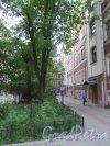 Невский проспект, дом 84-86, литера Б. Жилой дом во дворе. Вид сквера во дворе. фото май 2018 г.