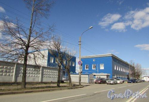 Люботинский проспект, дом 8, литера А и литера Б. Общий вид участка. Фото 7 апреля 2019 года.