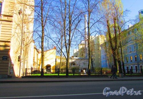 Сквер без названия №  13170 на Чкаловском пр. между домом 9/13 и домом 11/32. Фото 1 мая 2016 года.