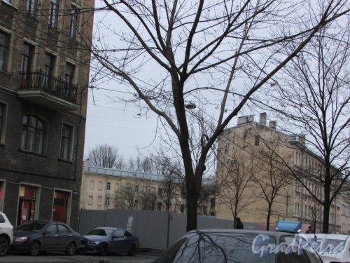 Малодетскосельский проспект, дом 40. Общий вид участка после сноса здания. Фото 16 ноября 2018 года.