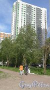 Южное шоссе, дом 53, корпус 2, строение 1. 26-этажный жилой дом 2016 года постройки. 1 парадная, 240 квартир. Фото 3 июня 2018 года.