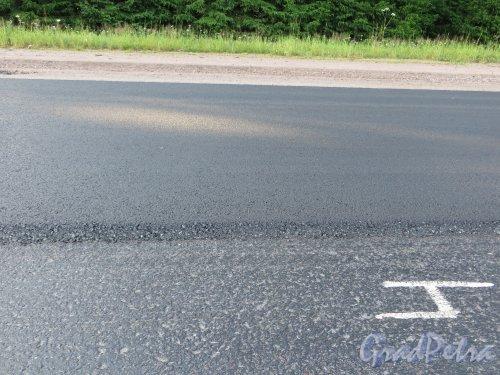 Укладка нового слоя асфальта на шоссе «Скандинавия» на участке от города Выборга до МАПП «Торфяновка». Фото 19 июля 2014 года.