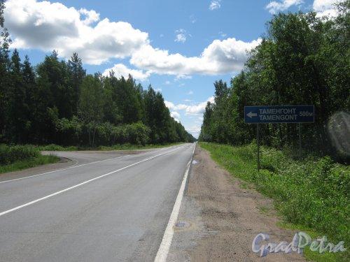 Лен. обл., Ломоносовский р-н, шоссе А-120. Поворот к деревне Таменгонт. Фото 28 июня 2012 г.