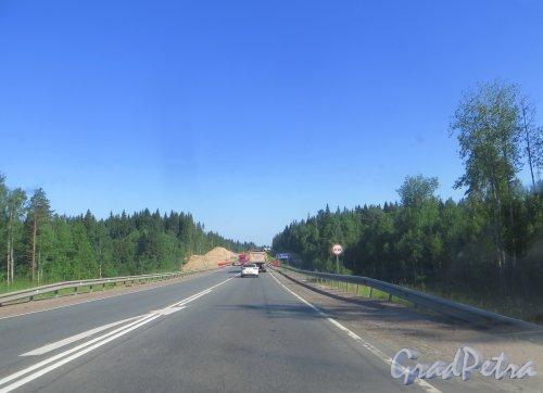 Подготовка к строительству нового моста через реку Сестру в створе шоссе «Скандинавия» в районе 55 километра. Фото 4 июля 2015 года.