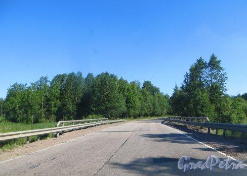 Трасса 41К-185 (Комсомольское - Приозерск) на участке между посёлком Возрождение и посёлком Перевозное. Фото 4 июля 2015 года.