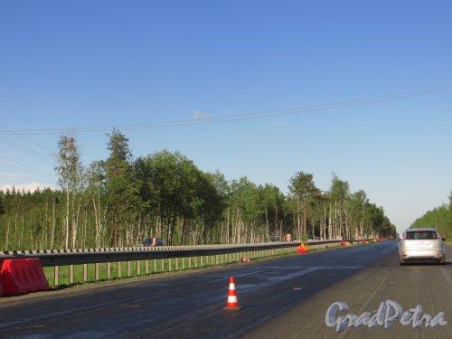 Ремонт дорожного покрытия Федеральной автомобильной дороги М-18 «Кола» с обустройством водостоков, на участке дороги из Петербурга в сторону Колтушского шоссе. Фото 8 июня 2015 года.