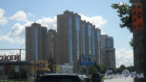 Выборгское шоссе, дом 17. Шесть 25-этажных корпусов ЖК «Шуваловские Высоты», кирпично-монолитные дома 2011 года постройки. Фото 25 июля 2015 года.