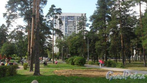 Лен. обл., Всеволожский р-н, г. Всеволожск. Колтушское шоссе, дом 98. 17-этажный кирпично-монолитный жилой дом 2011 года постройки. Фото 27 августа 2015 года.