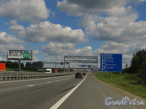 Федеральная автомобильная дорога А-121 «Сортавала». Схема развязка Сортавала-Приозерск-Скотное-Вартемяги-Токсово при движение из Санкт-Петербурга. Фото 5 июня 2015 года.