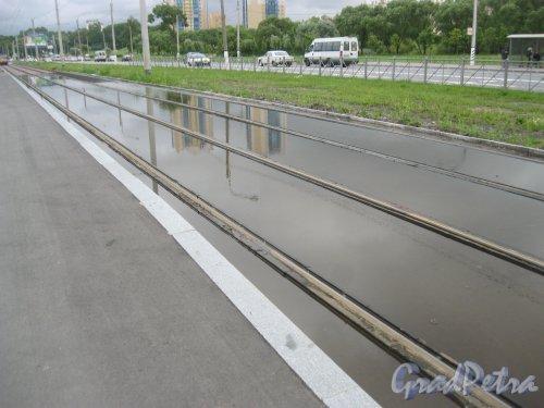 Петергофское шоссе в районе дома 3. Замена трамвайных рельсов. Фото 8 июля 2016 г.