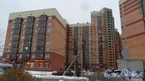 Всеволожск, Колтушское шоссе, дом 44, корпус 1. 24-этажный жилой дом 2012 года постройки. 11 парадных, в доме 21 лифт, 591 квартира. Вид дома с Василеозерной улицы. Фото 17 ноября 2016 года.