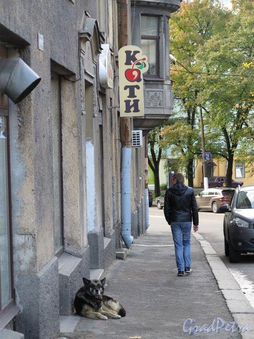 Ленинградское шоссе (Выборг), д. 15. Доходный дом Массинена. Фрагмент цокольного фасада. фото октябрь 2017 г.