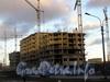 Строительство нового дома на месте НПФ «Пигмент»