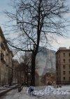 Молдагуловой ул., д. 3. общий вид и сквер. Фото январь 2012 г.
