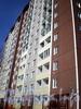 Ул. Дыбенко, д. 21, к. 3, лит. А. Фрагмент фасада. Фото апрель 2009 г.