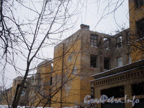 ул. Гастелло, д. 16. Здание бывшего общежития ЛИАПа. Январь 2009 г.