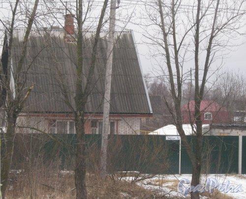 Красное Село (Горелово), ул. Заречная, дом 5. Общий вид с чётной стороны улицы на территорию. Фото 4 января 2014 г.