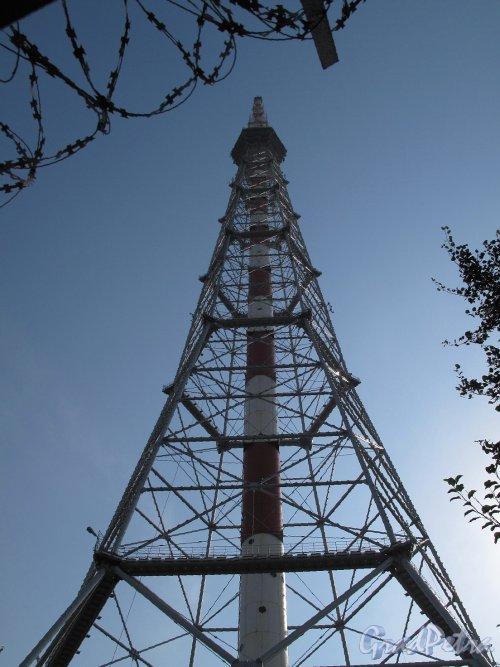 ул. Академика Павлова, д. 3. Телевизионная башня. Вид на башню от основания. Фото июль 2010 г.