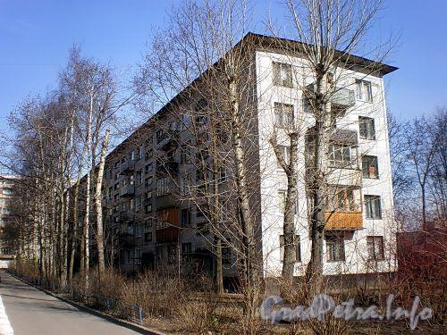 Ул. Дыбенко, д. 23, к. 5. Общий вид жилого дома. Фото апрель 2009 г.