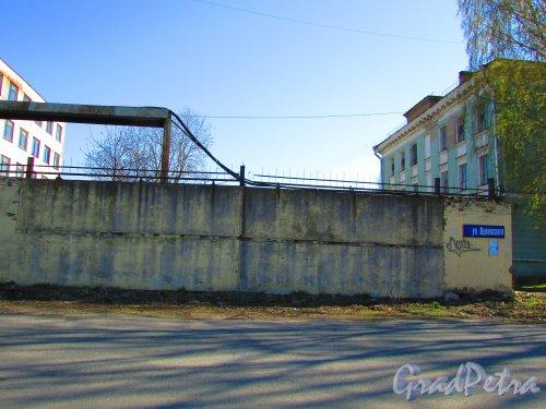 улица Одоевского, дом 8. Фрагмент ограды территории. Фото 1 мая 2016 года.