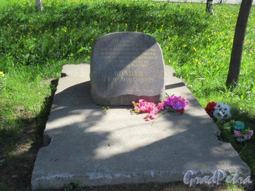 ул. Коллонтай, д. 17. Памятный камень П.А. Шумееву. фото май 2018 г.