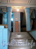 Захарьевская ул., д. 23. В парадной «Египетского дома». Фото июль 2010 г.