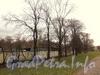 Ул. Смольного, д. 4. Вид участка со стороны сквера между Орловской улицей и Смольной набережной. Фото 23 октября 2010 г.