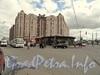 Ул. Ленсовета, д. 88. Вид от Звёздной улицы. Фото июнь 2011 г.