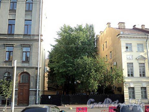 Сквер между домами 17 и 19 по Захарьевской улице. Фото июль 2010 г.