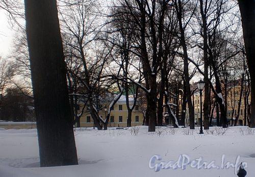 Кирочная ул., д. 31 (левый корпус). Вид из сада. Фото февраль 2010 г.