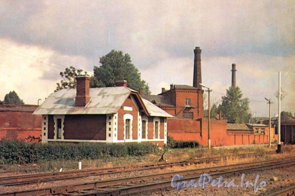 Станция «Цветочная» Окружной железной дороги. Фото ДЦНТИ Окт. ж. д. 1987 г. (из набора открыток «Ленинские места на Октябрьской железной дороге»)
