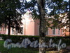 Ул. Ивана Черных, д. 23. Вид со двора. Фото сентябрь 2011 г.