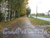 Перспектива улицы Здоровцева от дома 33, корп. 1 в сторону проспекта Ветеранов. Фото сетябрь 2011 г.