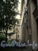 Инструментальная ул., д. 2. Корпус СПбГЭТУ («ЛЭТИ»). Вид вдоль главного фасада. Фото сентябрь 2011 г.