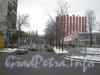 Перспектива ул. Возрождения от ул. Маршала Говорова в сторону пр. Стачек. Фото февраль 2012 г.