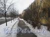 Перспектива ул. Белоусова от дома 17 (справа) в сторону Баррикадной ул. Фото февраль 2012 г.