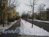 Перспектива пешеходной части ул. Белоусова от дома 15 (слева) в сторону пр. Стачек. Фото февраль 2012 г.